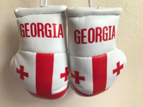 GEORGIA flag Mini Boxing Gloves for Car Truck Bus Jeep SUV RV Decor Rear-View Mi