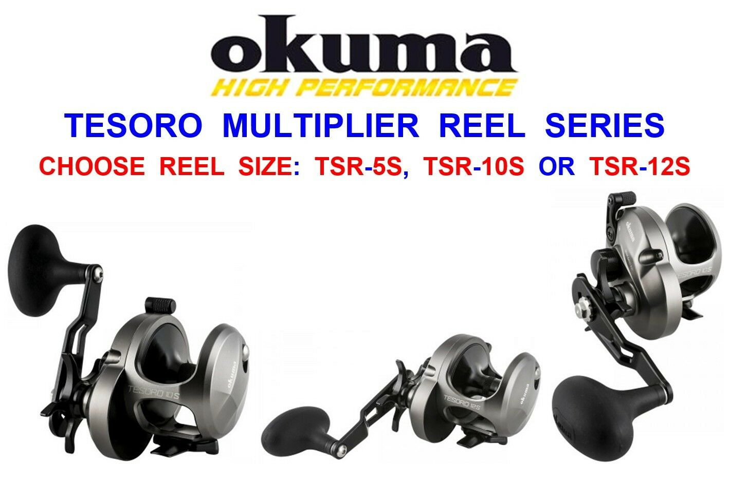 OKUMA TESgold HIGH SPEED MULTIPLIER REEL FOR SURF SEA FISHING LINE BOAT ROD LURES