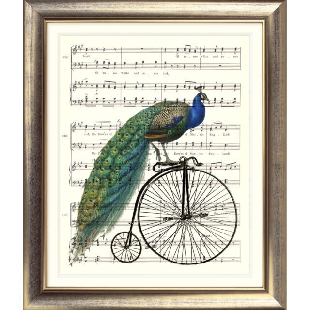 ART PRINT ORIGINAL VINTAGE MUSIC SHEET Page PEACOCK BICYCLE OLD BIKE poster art