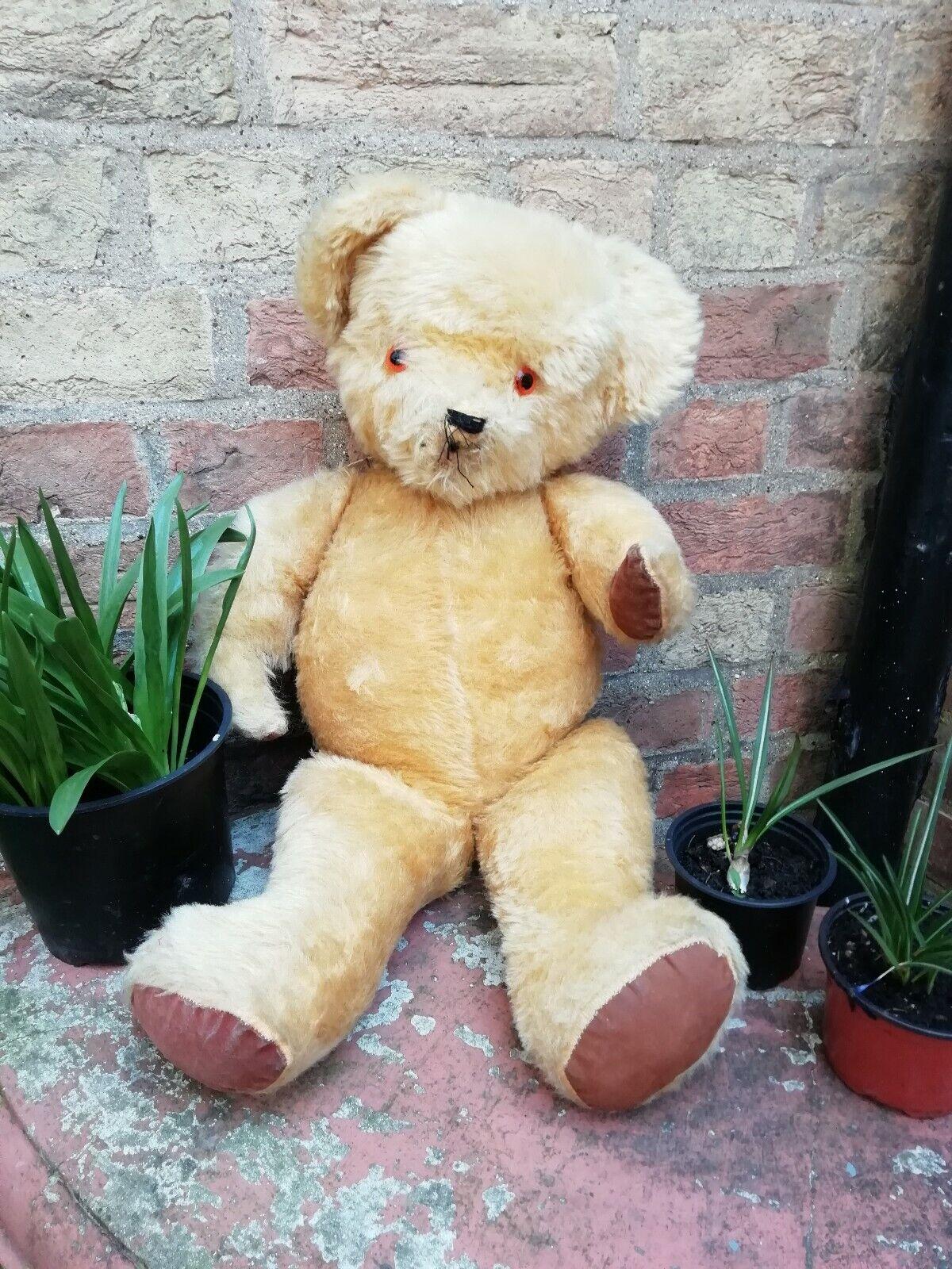 Antico Vintage SNODATA INGLESE GReE 25  oroEN Teddy orso