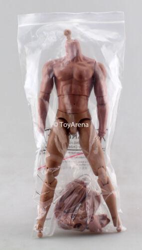 Jiaou Doll 1//6 Male Body Wheaton Sixth Scale Figure Possible Display USA NEW