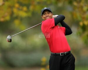 GOLFER-TIGER-WOODS-8X10-SPORTS-PHOTO-EP-854