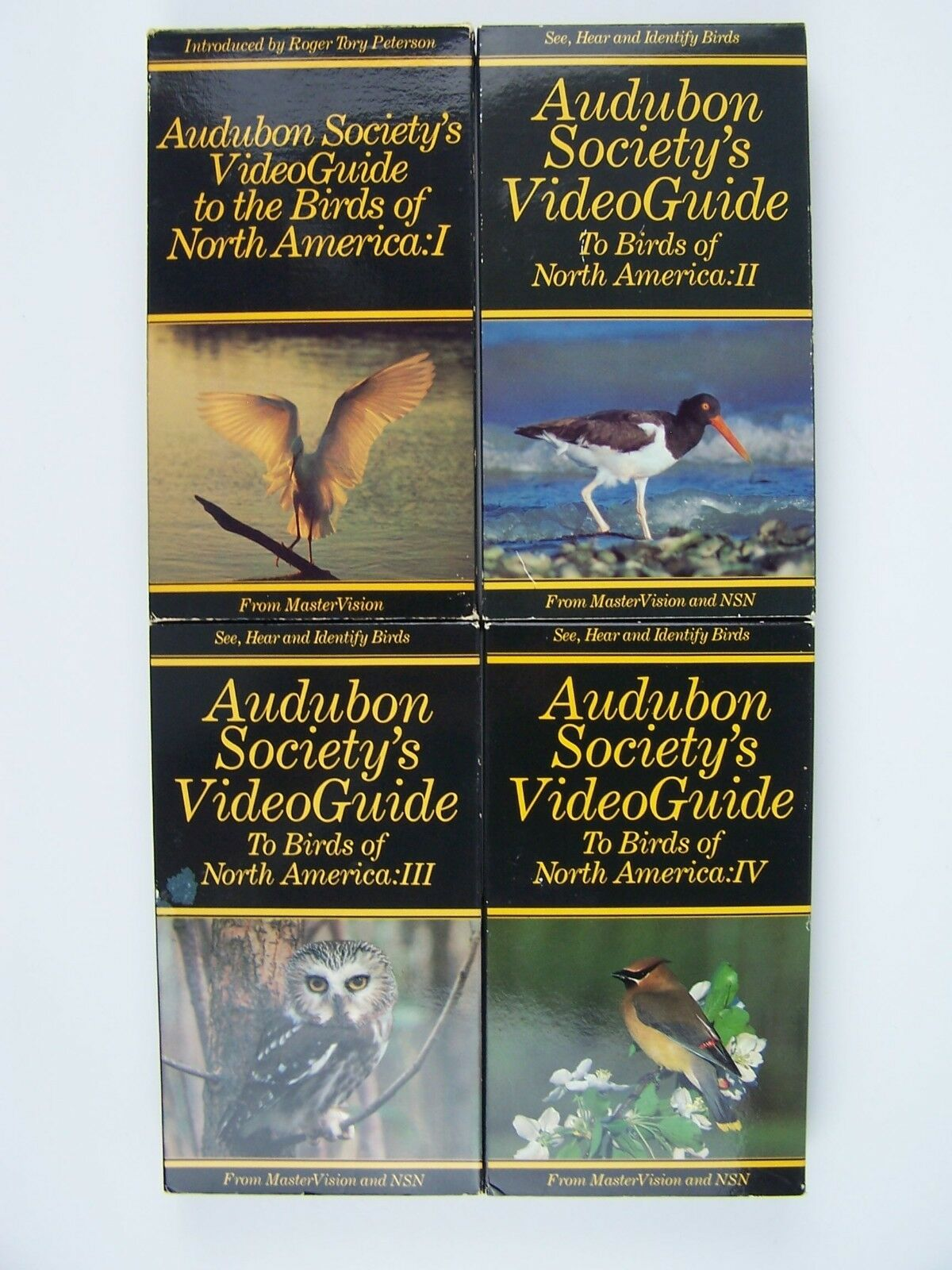 Audubon Society's VideoGuide To Birds of North America