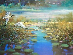 Jean-John-Sindelar-The-Blue-Lagoon-Australian-Crane-Birds-Cranes