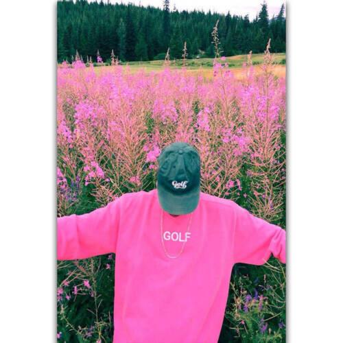 H918 Tyler The Creator Rap Music Singer Rapper Star Poster Wall Silk Art