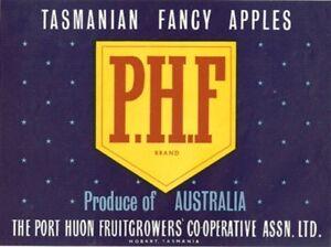 SALE-Vintage-Tasmania-Apple-Case-Labels-Fruit-Art-Poster-034-baker-039-s-dozen-034-M-13