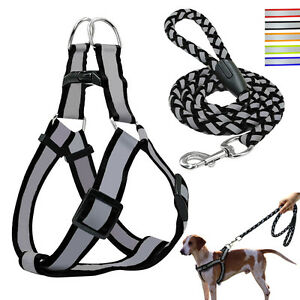 Reflective Nylon Dog Pet Puppy Safty Noctilucent Harness&Leash Step-in S\M\L