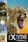 Ready to Read: Extreme Animals by Sarah Creese (2011, Paperback)