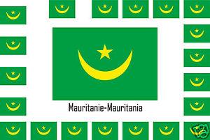 Assortiment lot de10 autocollants Vinyle stickers drapeau Mauritanie-Mauritania