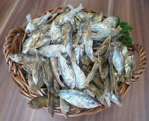 5 Kg Poisson Séché Env. Cm Comme Omena Sprotten Nourriture Pour Chien Chat