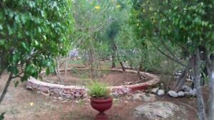 Terreno con Hacienda en Valladolid Yucatan