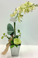 Vanda Cream/green Orchid W/rose Potted20 T.silver Container. Artificial.