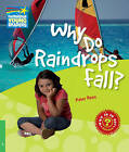 Why Do Raindrops Fall? Level 3 Factbook: Level 3 by Peter Rees (Paperback, 2010)