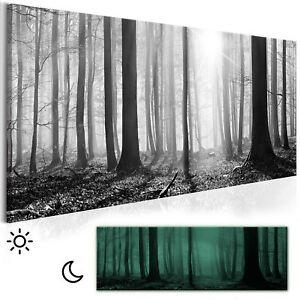 LEINWAND BILDER Wald Natur Landschaft WANDBILDER XXL Wohnzimmer Nachleuchtende