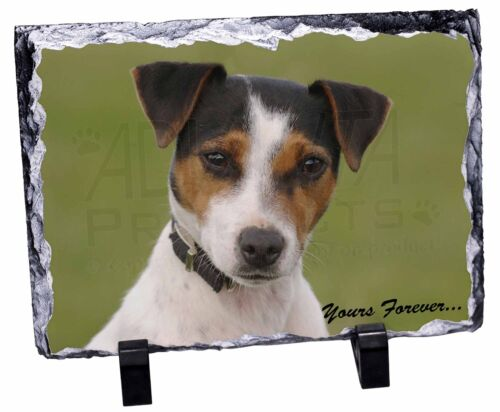 Jack Russell /'Yours Forever/' Photo Slate Christmas Gift Ornament AD-JR57ySL