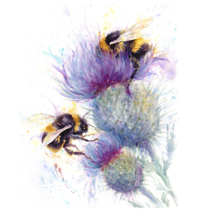Bees on thistle greetings card