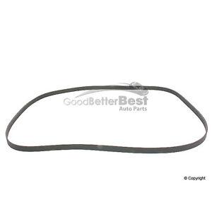 CONTINENTAL CONTITECH Serpentine Accessory Drive Belt 6K2205 0119972192