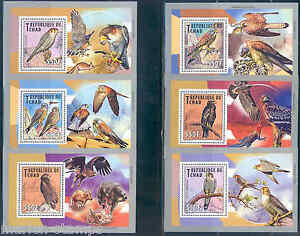 CHAD 2013 BIRDS OF PREY OWLS ETC SET OF SIX DELUXE SOUVENIR SHEETS MINT NH