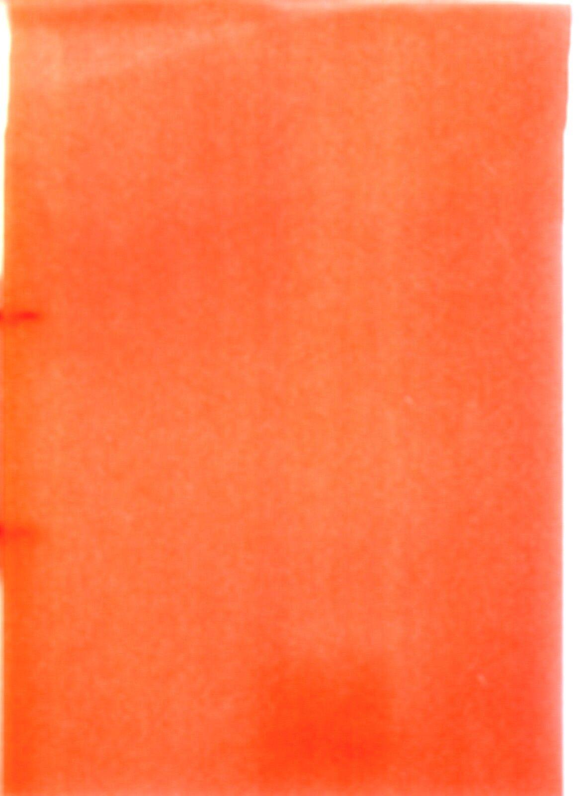Brunnen Ringbuch A4 FACT!16mm  2Ringe stabil 10-6551623 Rot