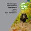 miniature 6 - 3x ISOTRONIC mobiler Wildtier und Waschbär Vertreiber gegen Füchse, Wildschwein