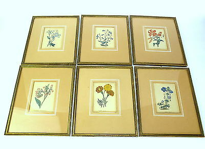 Art 6 X Coloured Stitches Framed 18 Jh Plants Be Friendly In Use