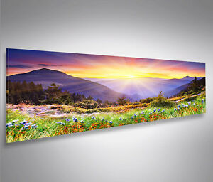 regenbogen bergwiese berge panorama format bild auf leinwand wandbild poster ebay. Black Bedroom Furniture Sets. Home Design Ideas