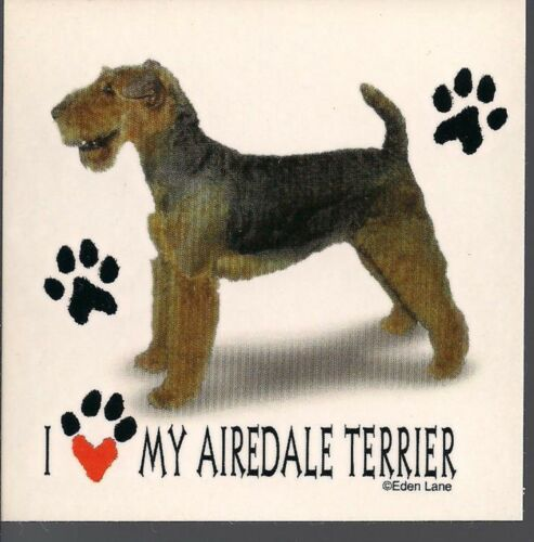 """I Love my Airedale Terrier 3 1//2/"""" X 3 1//2/"""" Magnet"""