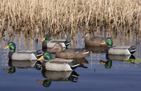 Avery Greenhead Gear Ghg Pro Grade Mallard Duck Decoys Weighted Keel Active 6 on sale