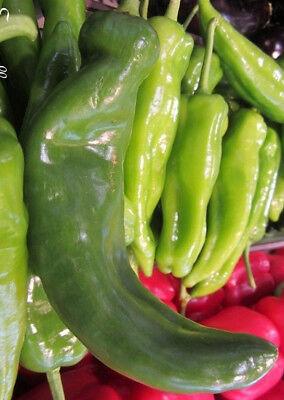 50 Graines de Poivron Corne de Bœuf légumes jardins potager méthode BIO