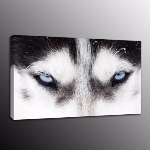 Animals Home Decor Canvas Print Painting Wall Art Wolf Wolves Eyes Poster