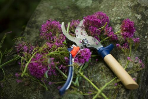 Three positions Stainless steel Opinel Hand Pruner For the gardening lovers