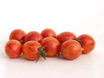 VEGETABLE TOMATO CHERRY ARTISAN PINK BUMBLEBEE 10 FINEST SEEDS