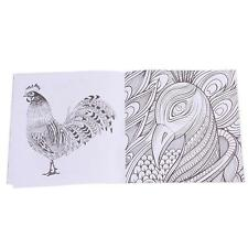 Bird Magic Mirror Of Secret Garden Coloring Book 14 Pages Adults Child Arts