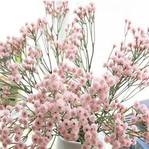 90 головки букет искусственный искусственный ребенка дыхание свадебное украшение цветы T