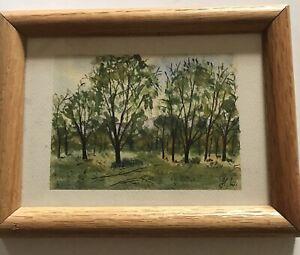 "Original Watercolor - Trees - Framed - 6"" X 8"""