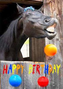 Happy Birthday Horse 3d Lenticular Motion Postcard