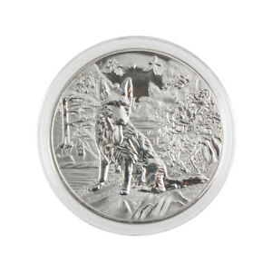 year-of-the-dog-silver-chinese-2018-anniversary-coins-souvenir-coin-new-FH