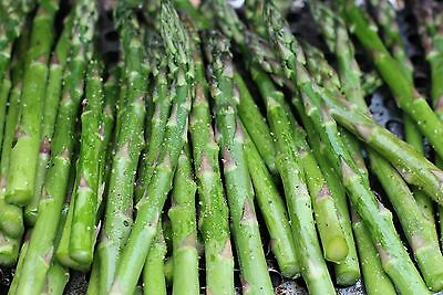 ASPARAGUS * MARY WASHINGTON * A. officianalis * PERENNIAL * SEEDS