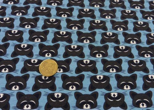 Raccoon Party Only Raccoons Petra Laitner Sweatstoff blau Hilco Kinderstoff 25