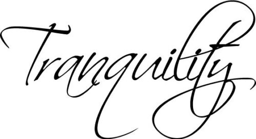 Tranquility vinyl wall decal quote sticker decor Inspirational Word Saying Cute