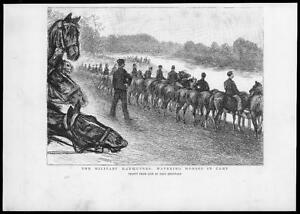 1893-Antique-Print-MILITARY-Watering-Horses-Mounted-Soldiers-Manoeuvres-55