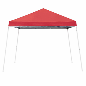 Z-Shade 10' x 10' Angled Leg Instant Shade Canopy Tent  with Steel Stakes + Case  hot sale online