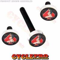 Silver Billet Fairing Windshield Hardware Kit 14-up Harley Pin Up Girl Red Spade