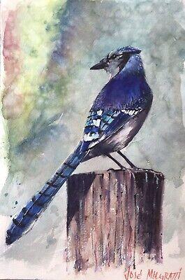 Blue Bird Drawing Pastel Bird Birdie Painting Birds Artwork Bird Watcher Gift Original Art A4