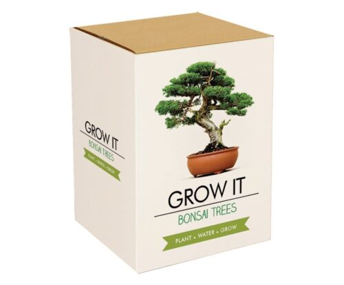 Gift Republic Grow It Grow Your Own Bonsai Trees Ideal Gift