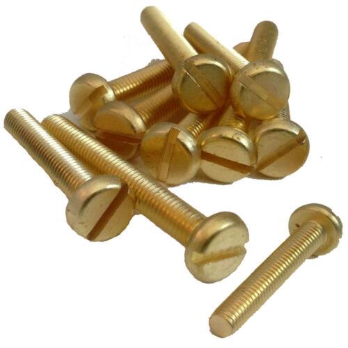 Pan Slotted Machine Screws Brass Various Sizes Metric Toolshack