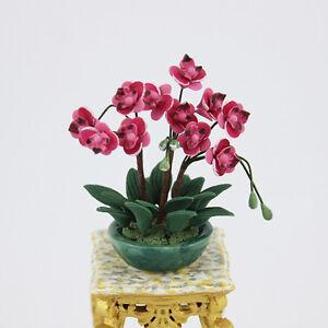 1-12-Puppenhaus-Miniatur-Staffelei-Topfpflanze-Blumendekoration-Traumhaus-O-V1H2