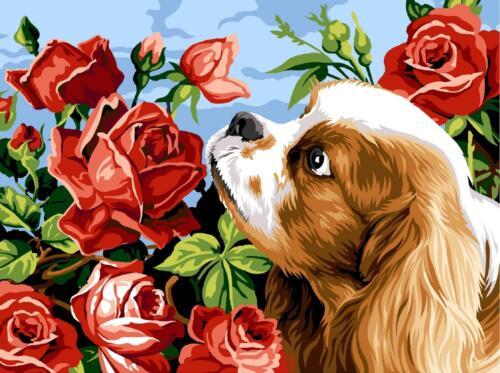 King Charles /& Roses Margot de Paris Tapestry//Needlepoint Canvas