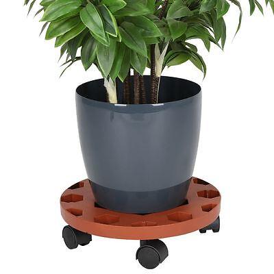 Pflanzenroller Blumenroller Transportroller Rollbrett Untersetzer Kübelroller