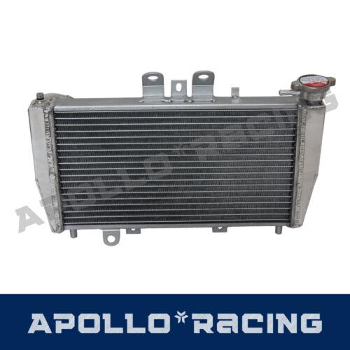 Aluminum Racing Radiator For Triumph Speed Triple 955i 2002 02